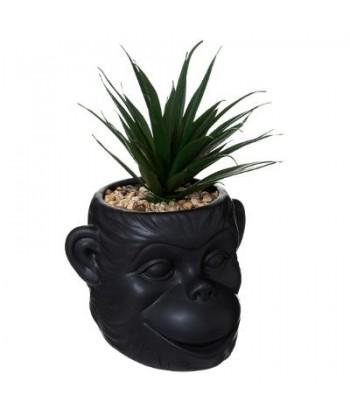 Dirbtinis augalas juodame vazonėlyje MONKEY 21cm