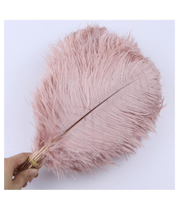 Rožinė stručio plunksna 30-35cm (1vnt)
